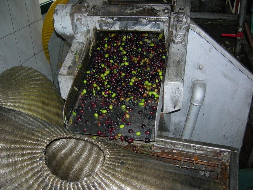 Olívaolaj prés